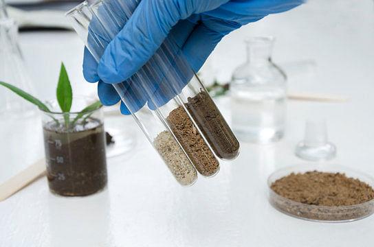 बिहार में छह साल बाद शुरू होगी यह मिट्टी जांच प्रयोगशाला, सात जिलों के किसानों को मिलेगा लाभ