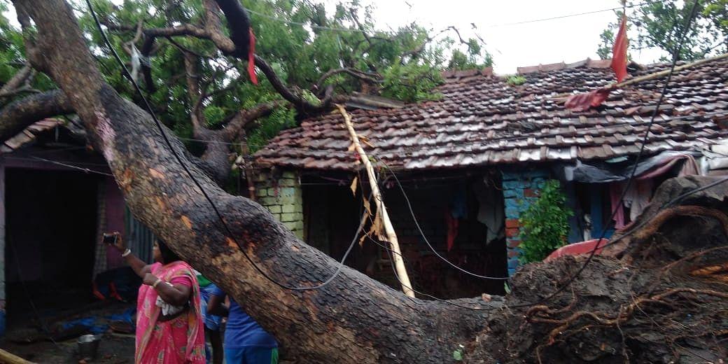 Yaas Cyclone Update: उत्तर 24 परगना और हुगली में यश से पहले बवंडर ने ली 2 की जान, 80 से ज्यादा मकान क्षतिग्रस्त