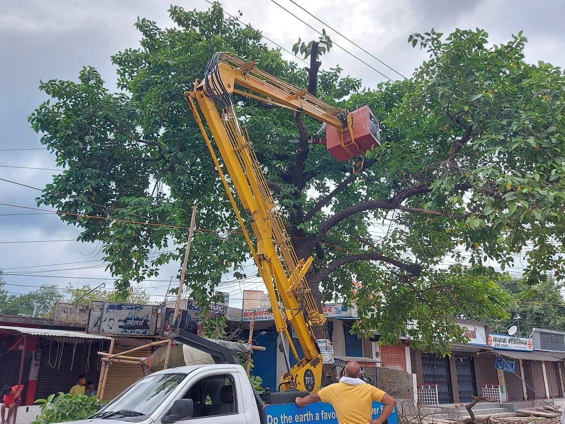 मुजफ्फरपुर गौशाला चौक पर बिजली के तार से सटे पेड़ों को काटा जा रहा