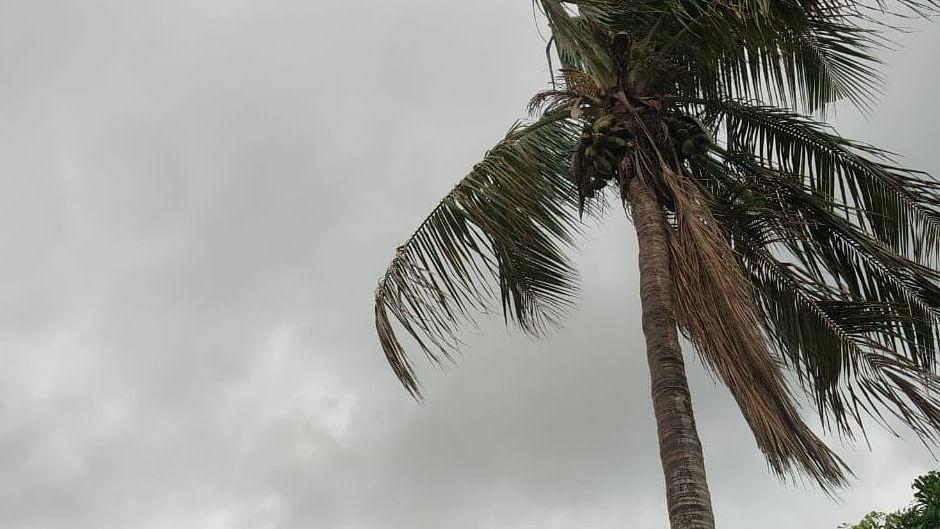 UP News: बारिश के खतरे को देखते हुए गाजियाबाद में दो दिनों तक बंद रहेंगे 12वीं तक के स्कूल, विभाग का फैसला