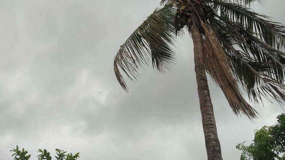 ट्रफ लाइन से गुजर रही है बिहार, इन जिलों में ठनका गिरने के साथ भारी बारिश का अनुमान, मौसम विभाग का येलो अलर्ट जारी