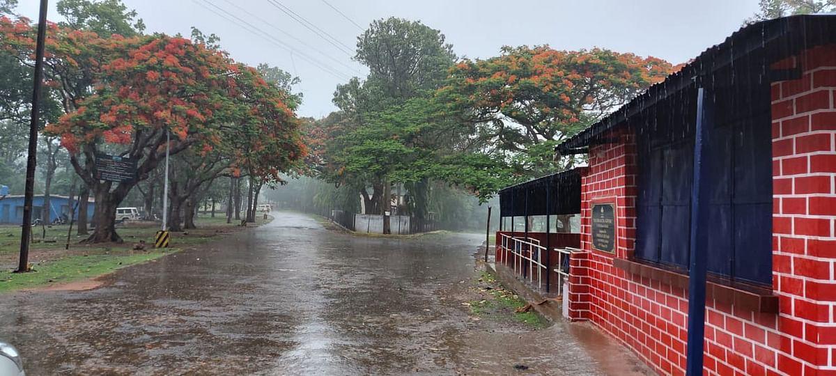 चक्रवाती तूफान का असर, मूसलाधार बारिश
