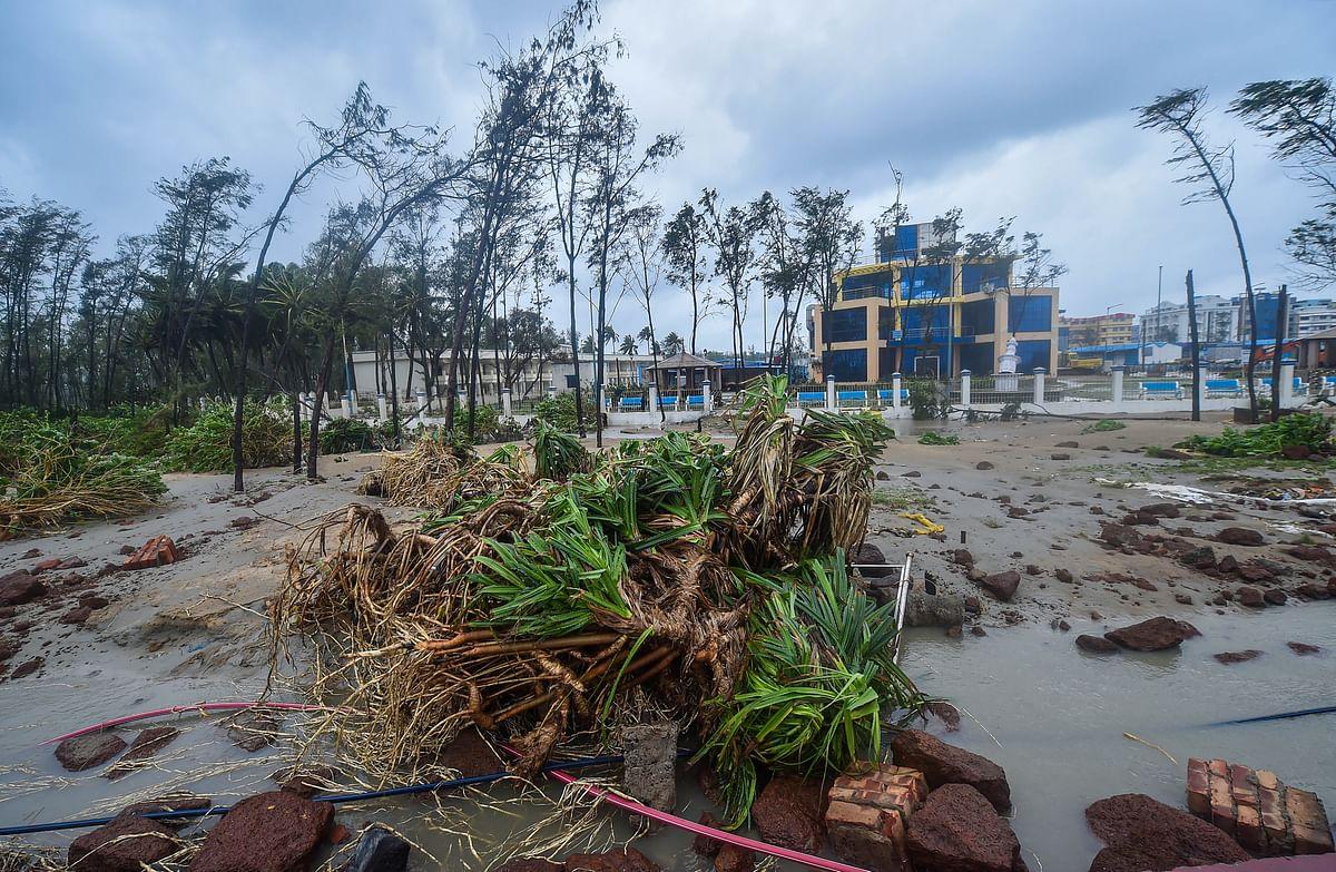 Cyclone Yaas Updates : चक्रवात 'यास' पहुंचा झारखंड, उखड़ गया विशाल पेड़, कई जिले जलमग्न, जानें कैसे तांडव मचा रहा है तूफान