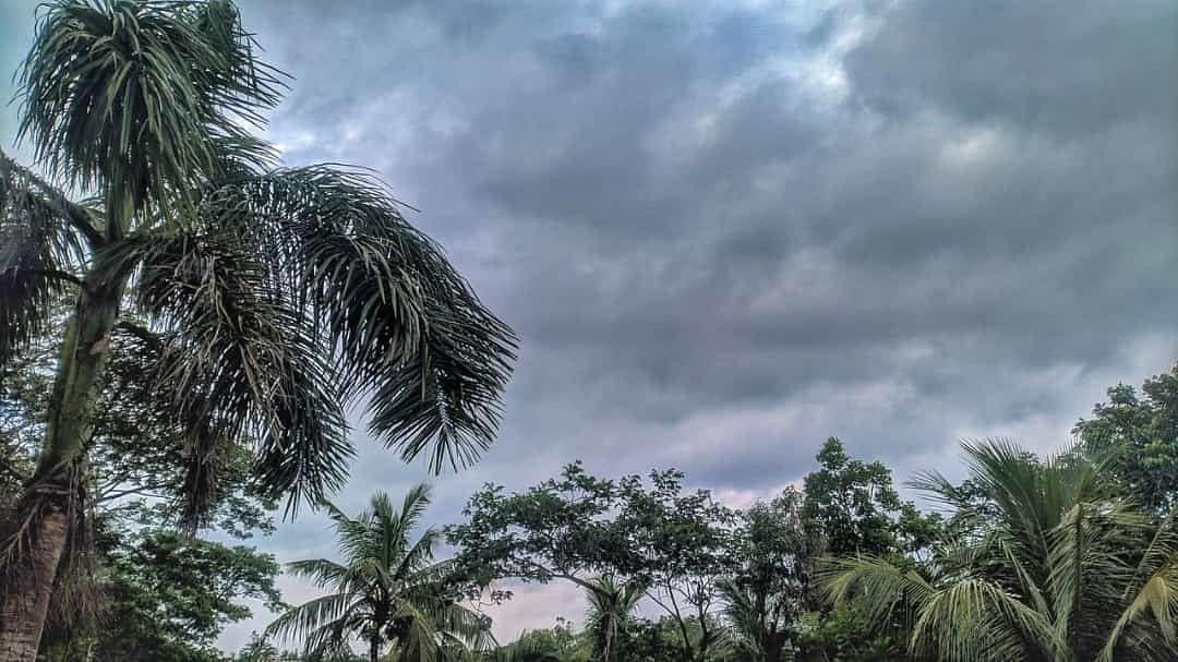 चक्रवाती तूफान से पहले क्यों जारी किया जाता है रेड, येलो और ऑरेंज अलर्ट? जानिए मौसम विभाग की चेतावनी के बारे में सबकुछ