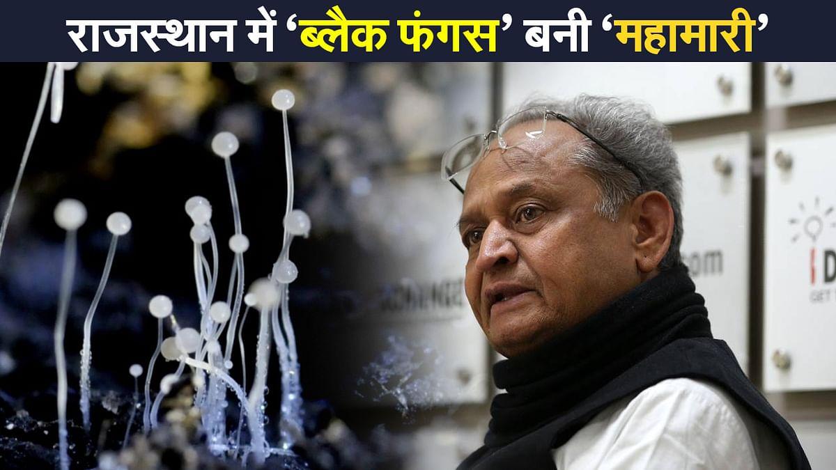 Black Fungus: राजस्थान में 'ब्लैक फंगस' महामारी घोषित, अशोक गहलोत सरकार का बड़ा फैसला