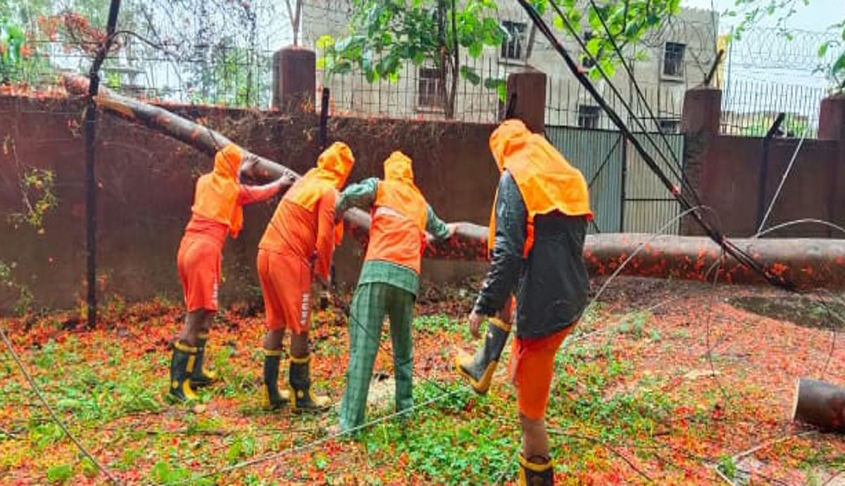 Jharkhand news : चक्रवाती तूफान के कारण जगह- जगह पेड़, बिजली के तार और टूटे पोल को हटाते NDRF की टीम.