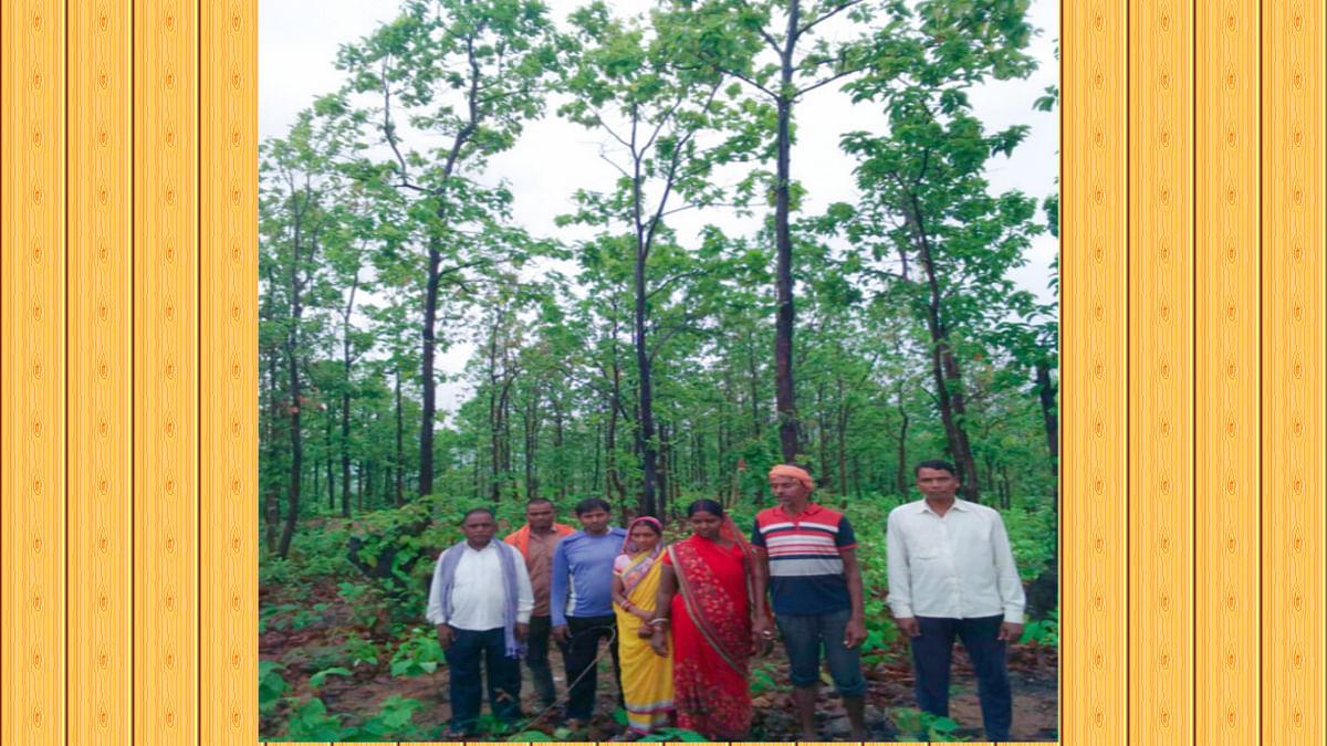 बड़कागांव के काड़तरी और खैरातरी गांव के ग्रामीणों का देखिये जुनून, आंधी- तूफान में भी जंगलों की करते हैं रक्षा