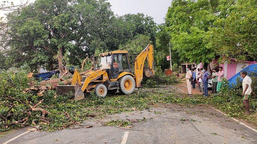 सरायकेला : तेज आंधी में गिरा विशालकाय पेड़, आम चुन रहे दो किशोर की दबकर मौत, घर के थे इकलौते चिराग