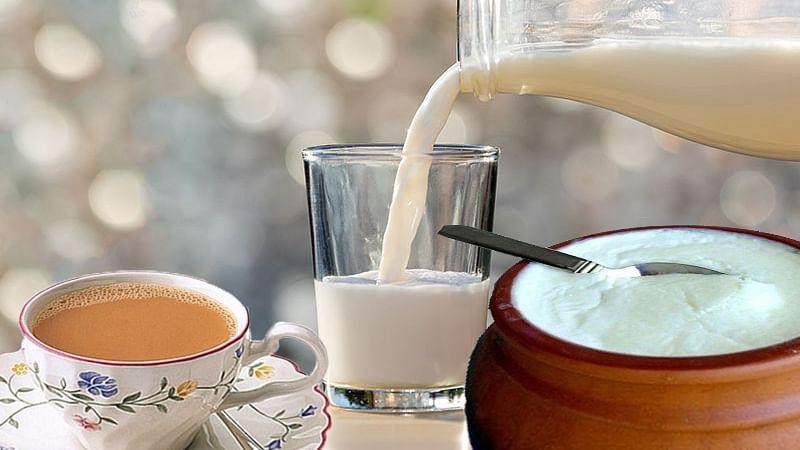 Poisonous Food Combinations: चाय, दूध, दही जैसे फूड-ड्रिंक्स का इन चीजों के साथ भूल से भी न करें सेवन, पेट में फैलेगा जहर, जान जाने तक की आ सकती है नौबत