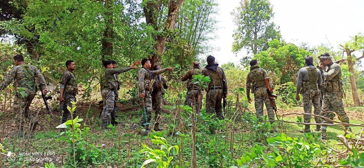 Jharkhand Naxal News : झारखंड के लातेहार के जंगल में पुलिस-नक्सली मुठभेड़, एक उग्रवादी ढेर, हथियार बरामद, सर्च अभियान चला रही पुलिस