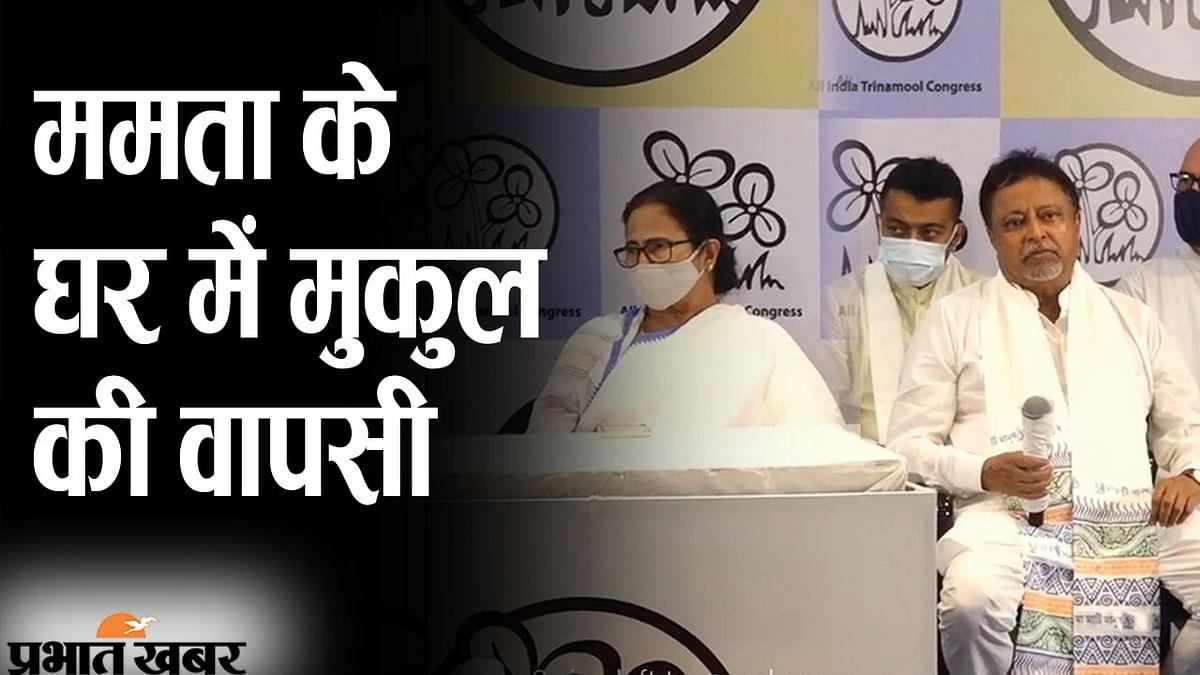 ममता बनर्जी के घर में मुकुल रॉय की वापसी, प्रेस कॉन्फ्रेंस में TMC सुप्रीमो बोलीं- ' अपना लड़का घर आ गया'
