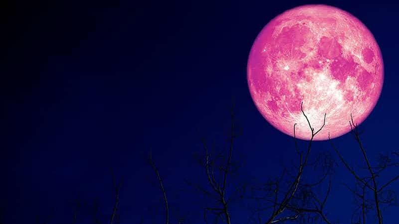 आज शाम सूर्योदय के बाद आसमान में दिखेगा Strawberry Moon, जानें इसका Honey Moon से क्या है संबंध, क्यों आकार में बड़ा और गुलाबी दिखेगा चांद
