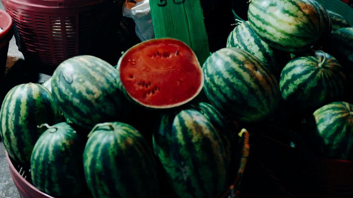 Watermelon Health Risks: रंग और वजन से ऐसे करें असली-नकली तरबूज की पहचान, लापरवाही से घर दस्तक दे सकती है ये बीमारी