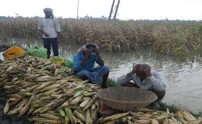 बिहार के किसानों को यास तूफान से फसल नुकसान का मिलेगा मुआवजा, जानें किन्हें मिल सकेगा यह लाभ