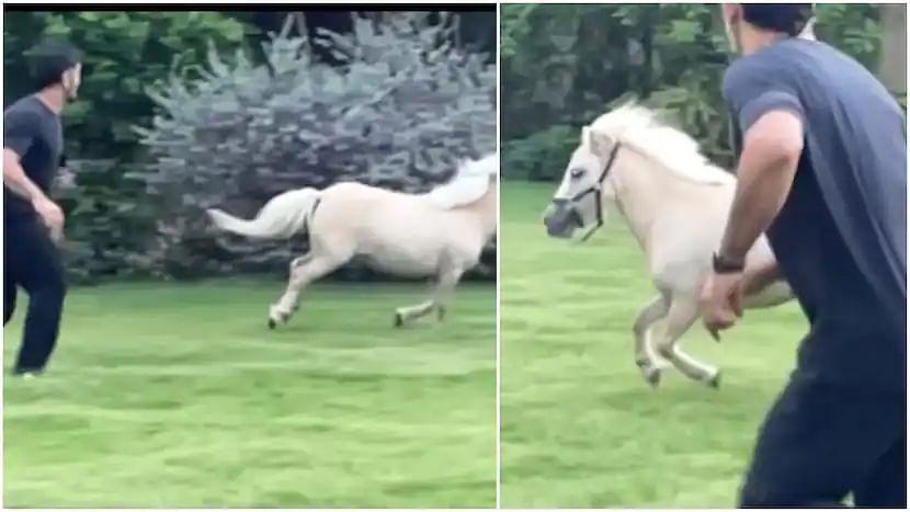 VIDEO: धाकड़ अंदाज में Dhoni ने घोड़े के साथ लगायी रेस, माही को देख फैंस हुए इमोश्नल