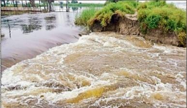 घोघारी नदी पर बना रसौली का जमींदारी बांध टूटा, गंगा, सोन और पुनपुन के जलस्तर में आयी कमी