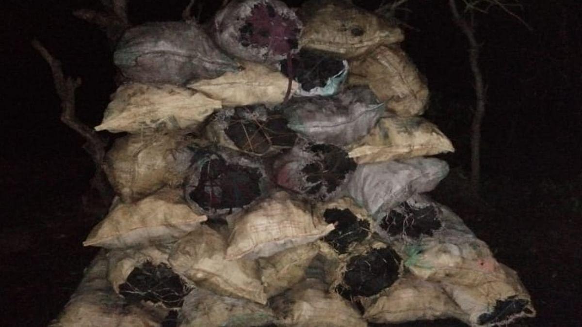 धनबाद के रामकनाली में अवैध कोयला तस्करी का भंडाफोड़,100 बोरी कोयला जब्त