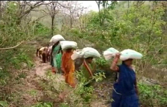 सड़क के अभाव में पगडंडी से जाती महिलाएं