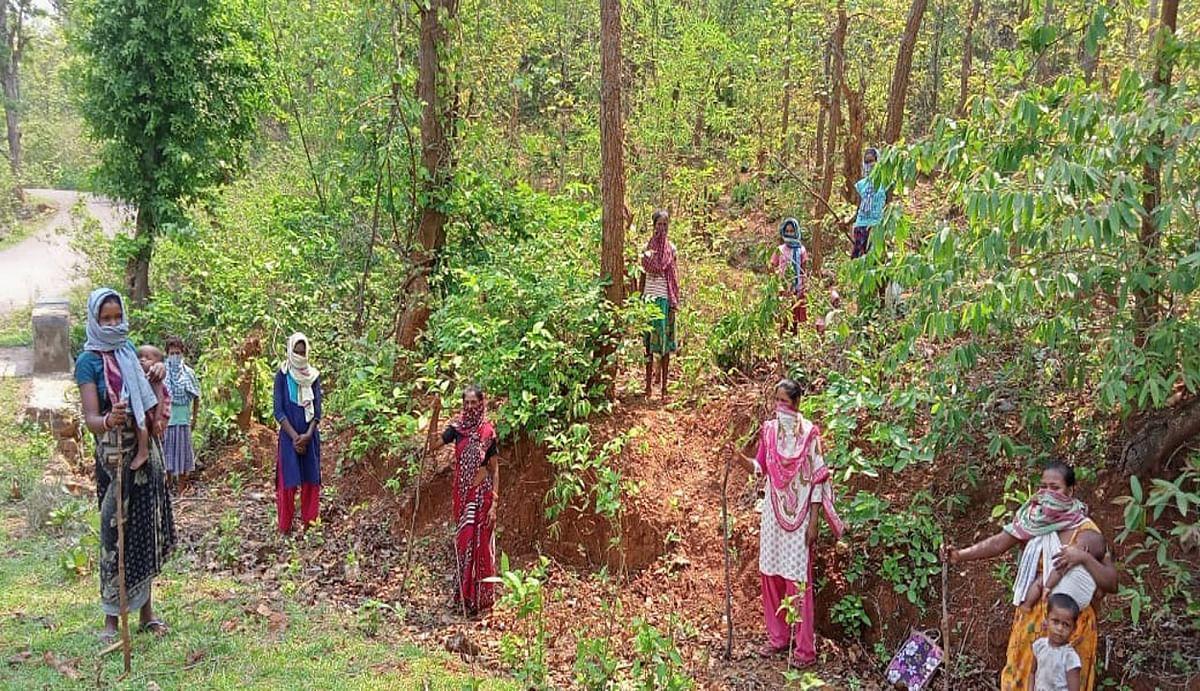 पेड़ों की सुरक्षा में जुटी झारखंड की ग्रामीण महिलाएं, जंगल बचाओ अभियान से पेड़ों की कटाई में आयी कमी