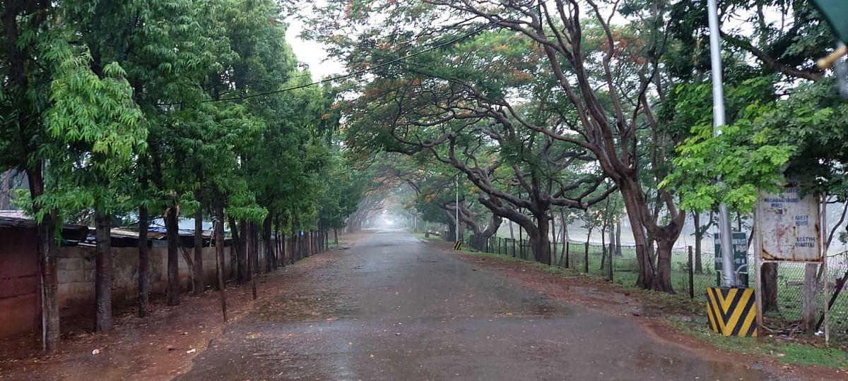 झारखंड में दिख रहा तेलंगाना में आये चक्रवात का असर, अगले 3 दिनों तक राज्य के इन इलाकों में भारी बारिश के आसार
