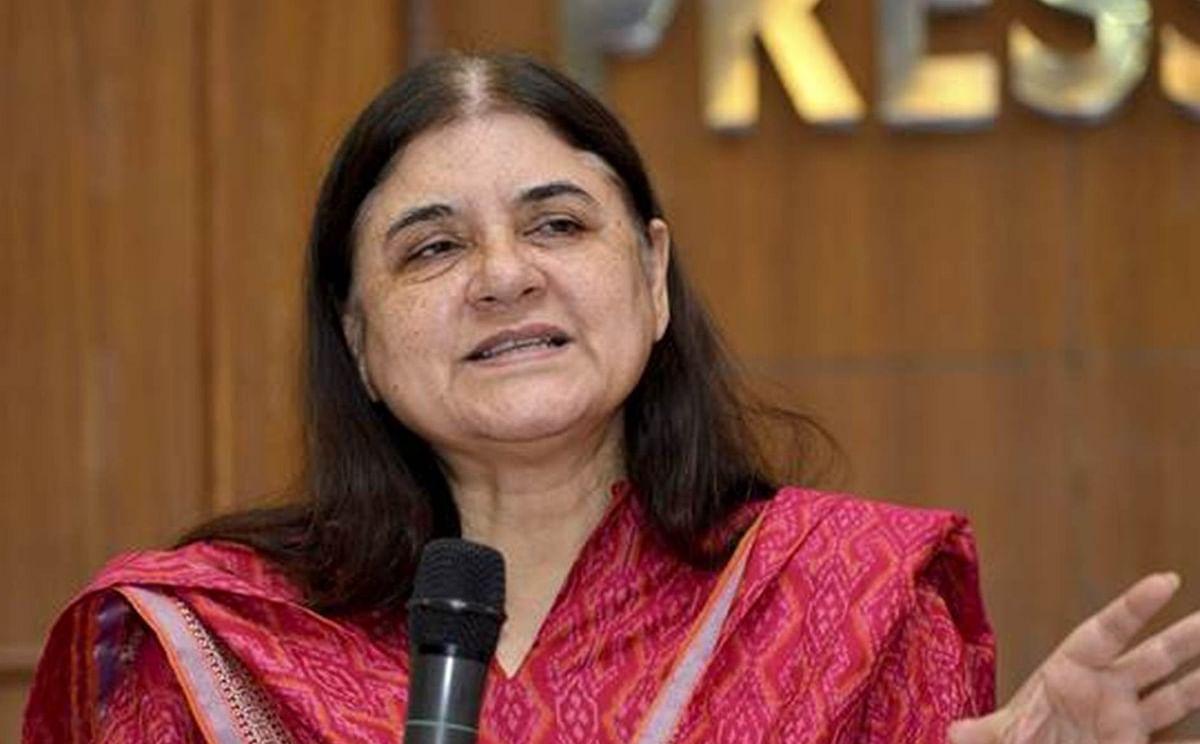 Veterinary Doctor Controversy : भाजपा सांसद अजय विश्नोई ने मेनका गांधी को बता दिया 'घटिया महिला', गरमाई राजनीति