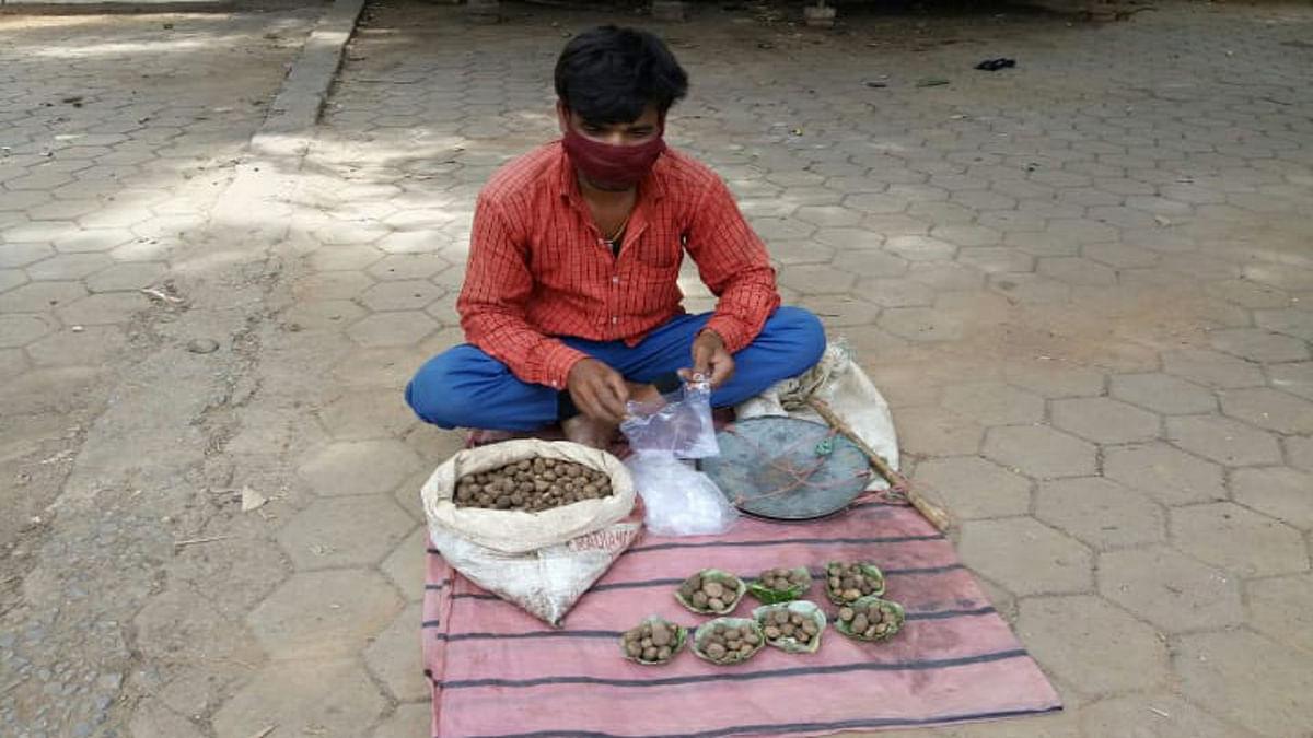 Jharkhand news : गुमला के बाजार में प्राकृतिक सब्जी पुट्टू भी पहुंचा. लोगों की बढ़ी मांग.