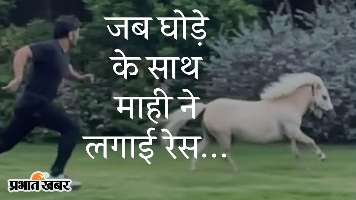 घोड़े के साथ टीम इंडिया के पूर्व कैप्टन महेंद्र सिंह धौनी की रेस, सोशल मीडिया पर वीडियो वायरल