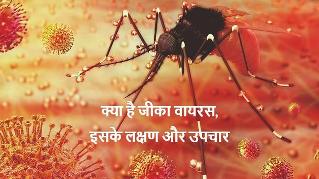 Zika Virus Symptoms: जीका वायरस कितना खतरनाक? जानें कैसे करता है संक्रमित, क्या है इसके लक्षण व बचाव के उपाय