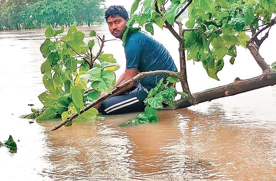 बाढ़ में मकान गिरा तो पेड़ पर ली शरण, शिवहर-सीतामढ़ी का सड़क संपर्क टूटा