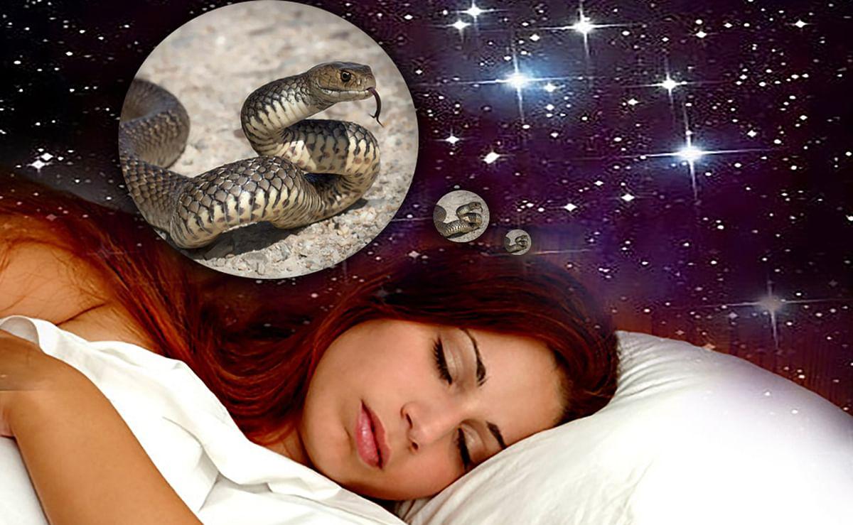 Sapne Me Saap Dekhne Ka Matlab: सपने में सांप दिखे तो जरूर करें ये उपाय, बेहद अशुभ घटनाओं का होता है संकेत