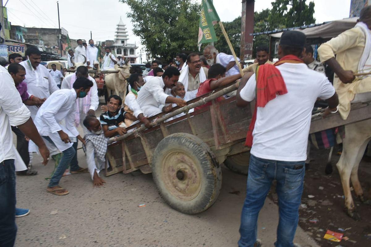 Bihar News: बैलगाड़ी पर बैठकर प्रदर्शन कर रहे थे राजद विधायक, अचानक बिदक गया बैल, जानें फिर क्या हुआ