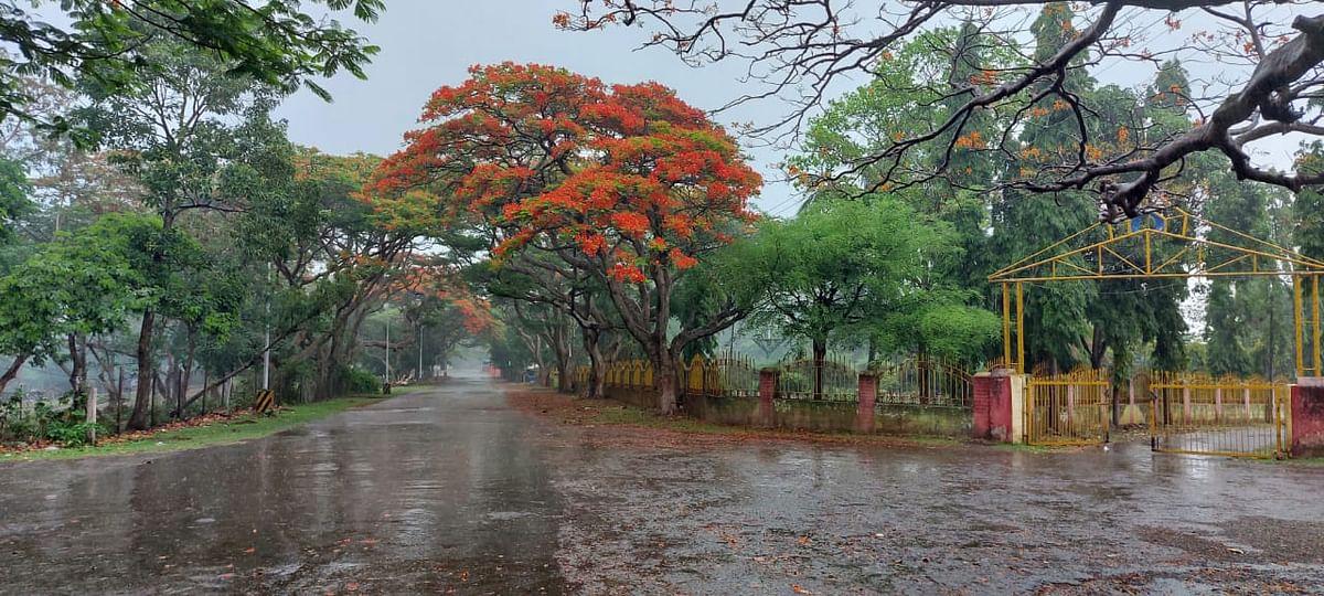 Bihar Weather Forecast : बिहार में अगले 48 घंटे तक झमाझम बारिश होने के आसार नहीं