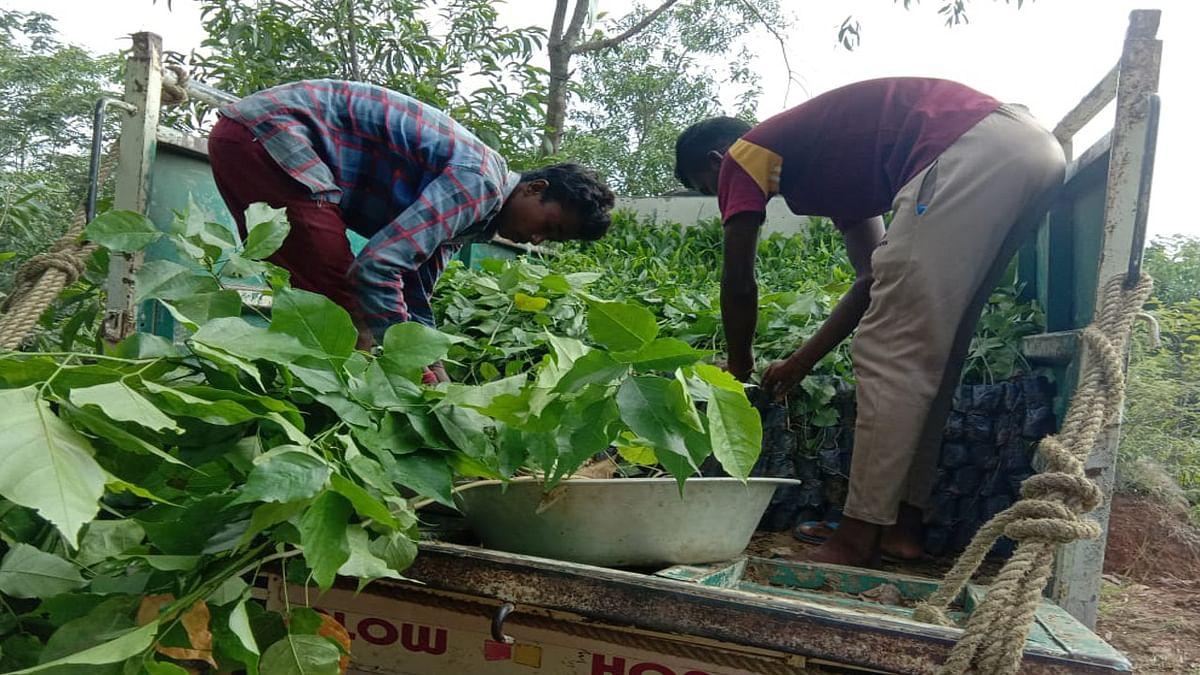 प्रभात खबर इंपैक्ट : स्टेट हाइवे ऑथोरिटी ऑफ झारखंड ने पौधरोपण के लिए करीब 46 लाख रुपये किये आवंटित, काटे गये नये पौधों की जगह लगेंगे नये पेड़
