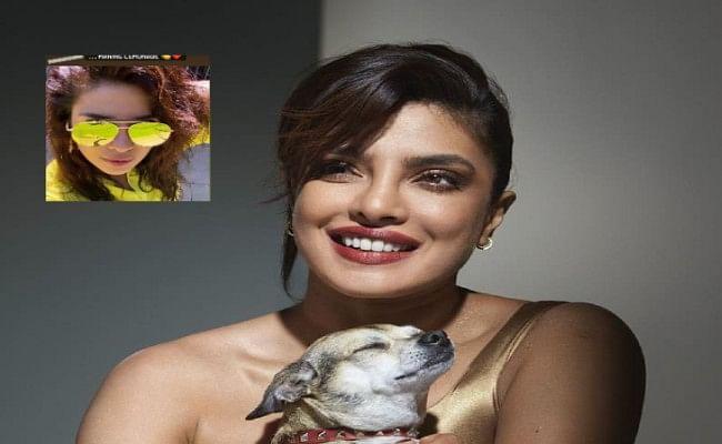 Birthday से ठीक पहले Priyanka Chopra ने शेयर की 'यलो कलर' की टी-शर्ट में अपनी तसवीर, एक्ट्रेस लग रहीं कमाल
