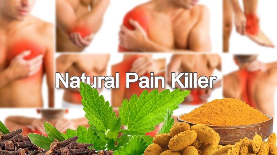 Natural Pain Killer: शरीर के इन हिस्सों के असहनिय दर्द से तुरंत राहत दिलाते है ये नेचुरल पेन किलर