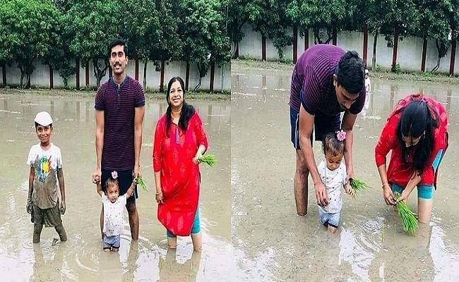 पत्नी और बच्चों के साथ खेत में धान रोपते बिहार के कलेक्टर साहेब, सोशल मीडिया पर सुर्खियां बटोर रही तसवीरें