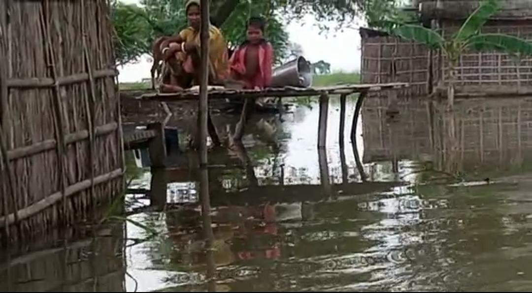 कटिहार के अमदाबाद में मचान पर सो रहे बाढ़ पीड़ित को सांप ने डंसा, मौत