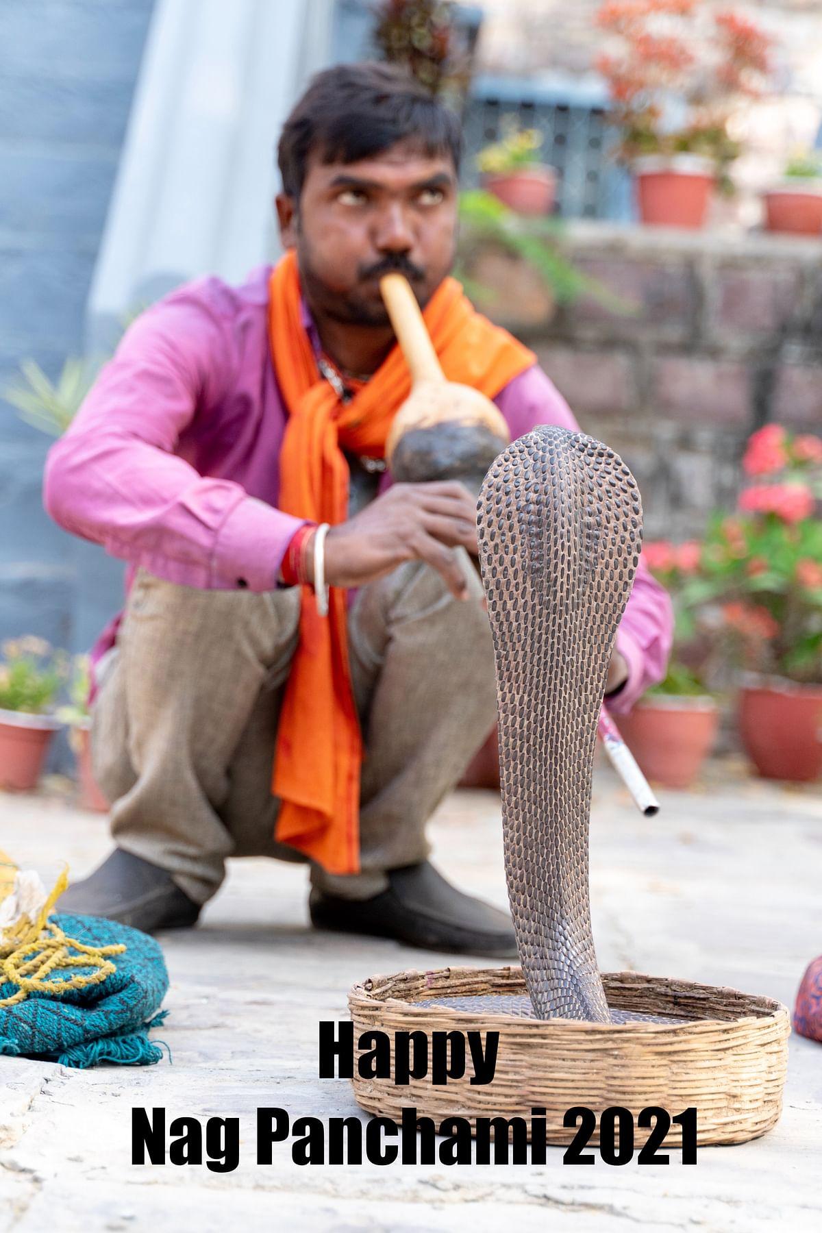 Happy Nag Panchami 2021, Wishes images