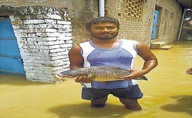 Bihar Flood: घटते पानी से भी बढ़ने लगा खतरा, अब बीमारी से बचना बना चैलेंज, देखें पानी उतरने के बाद का मंजर