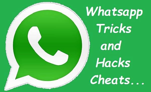 WhatsApp Tricks: ग्रुप में किसने पढ़ा आपका मैसेज, जानें पता लगाने का तरीका