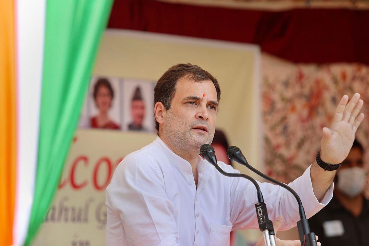 Rahul Gandhi पर होगी कार्रवाई ? हाई कोर्ट में बोला Twitter- 'हमारी नीति का उल्लंघन किया गया'