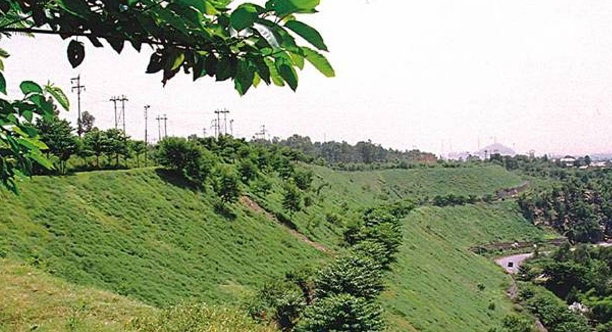 पर्यावरण संरक्षण की पहल: कोल इंडिया के जयंत प्रोजेक्ट में 200 हेक्टेयर से अधिक बढ़ा वन क्षेत्र