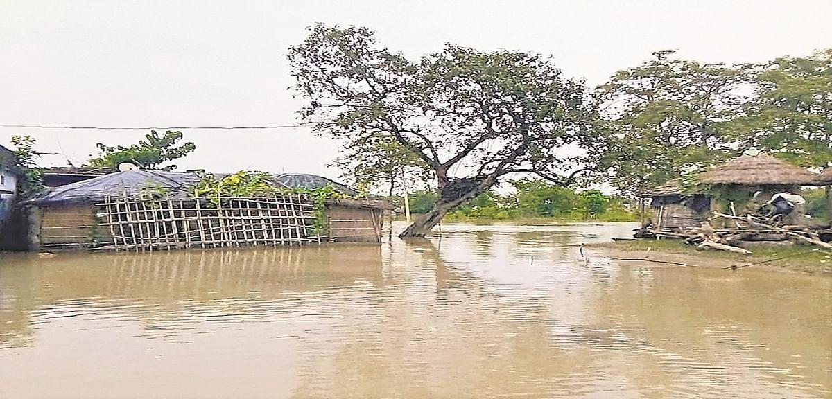 Bihar Flood: गंडक हुई शांत तो कटाव बनी समस्या, गोपालगंज में मौसमी बीमारियों का भी अब कहर