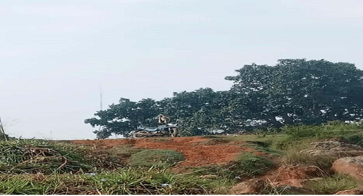 Jharkhand News : रांची में लंगूरों का आतंक, जख्मी लोगों का रिम्स में चल रहा इलाज, वन विभाग की टीम मुस्तैद