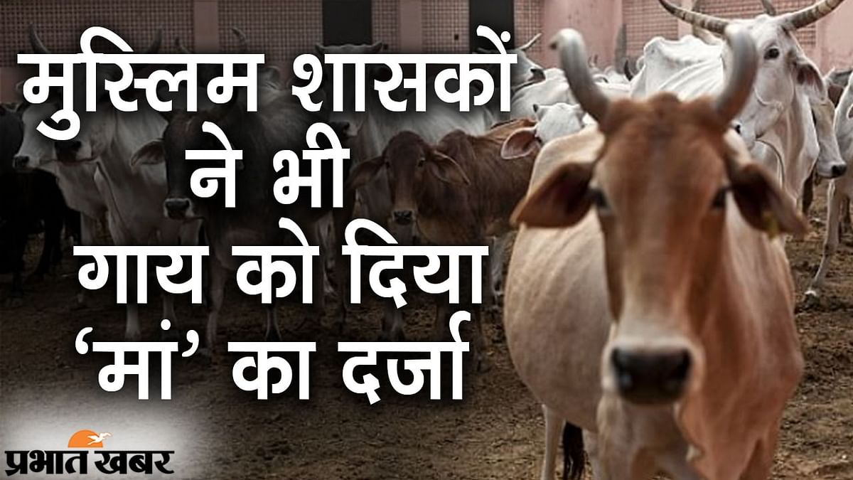 इन मुस्लिम शासकों ने भी गाय को माना था मां, गोकशी पर रोक के लिए बनाए थे कड़े कानून