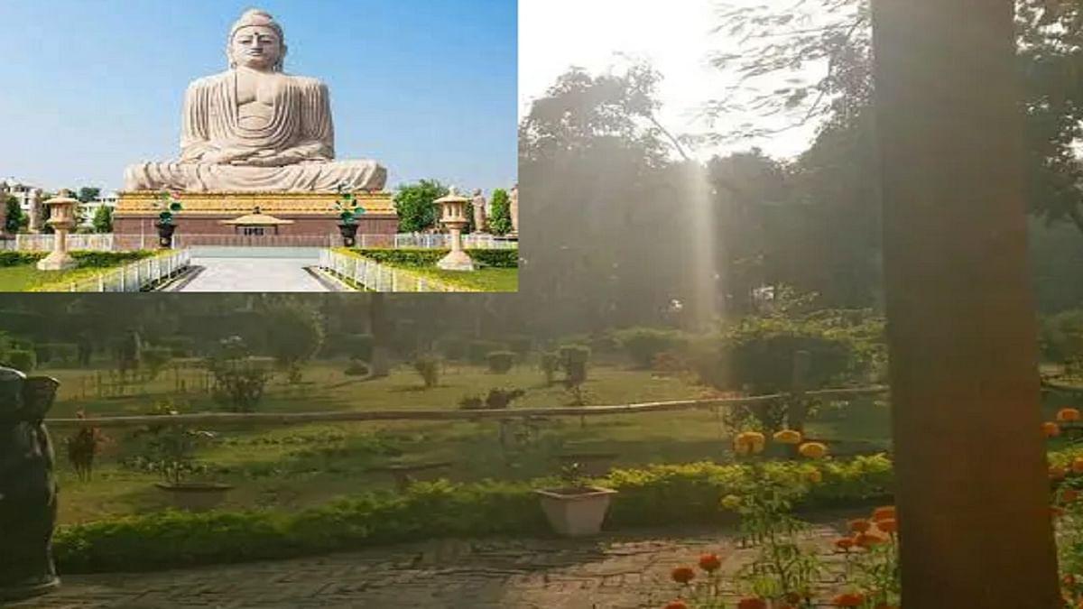 बोधगया के जेपी उद्यान में तैयार होगा तितली प्रजनन व संरक्षण केंद्र, बनेगा 250 फुट का गार्डेन बेड