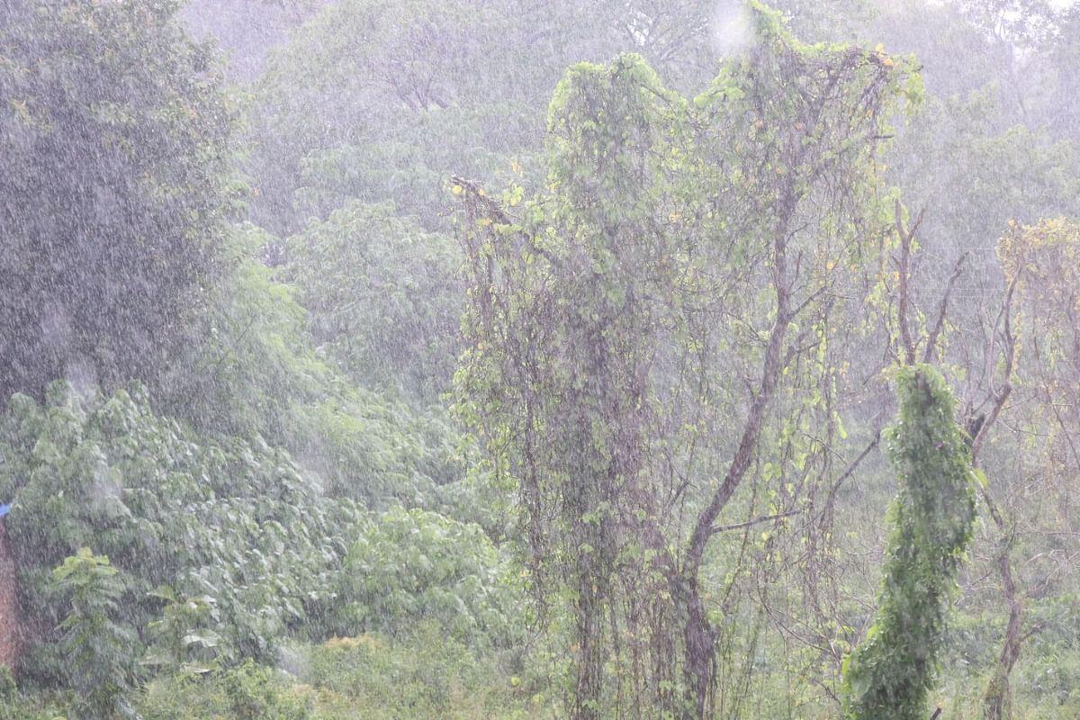 Jharkhand Weather Forecast : रांची में हो रही झमाझम बारिश, झारखंड के इन जिलों में कुछ ही घंटे में होगी बारिश