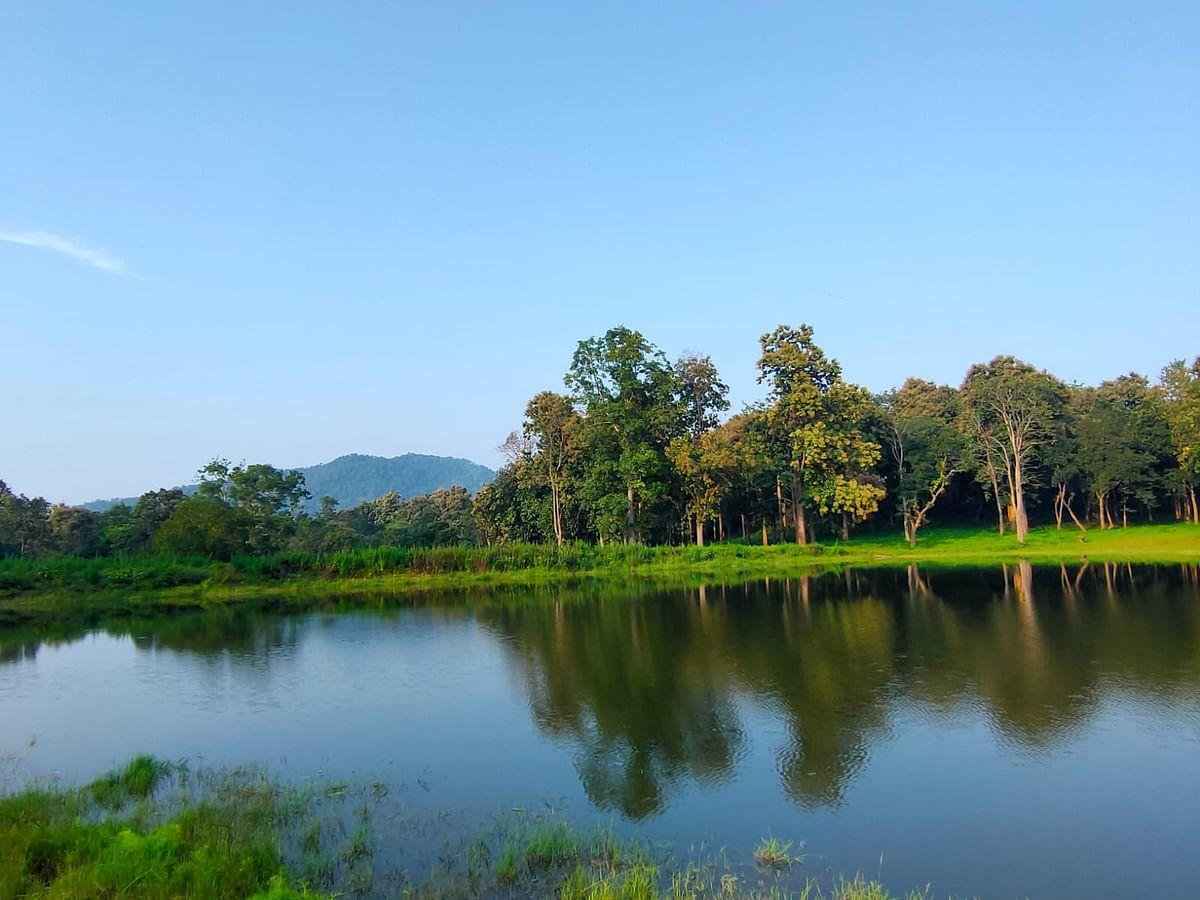 Tourist Places In Jharkhand : अब जंगल सफारी से पलामू टाइगर रिजर्व के बीहड़ों का कर सकेंगे दीदार, ये है तैयारी