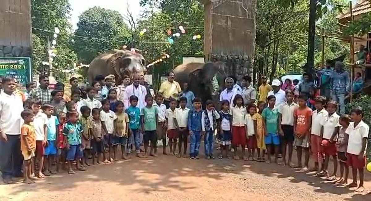 दलमा वाइल्ड लाइफ सेंचुरी के चेकनाका माकूलाकोचा में हथिनी गजनी के साथ स्कूली बच्चे, वन कर्मी व रेंजर दिनेश चंद्रा.