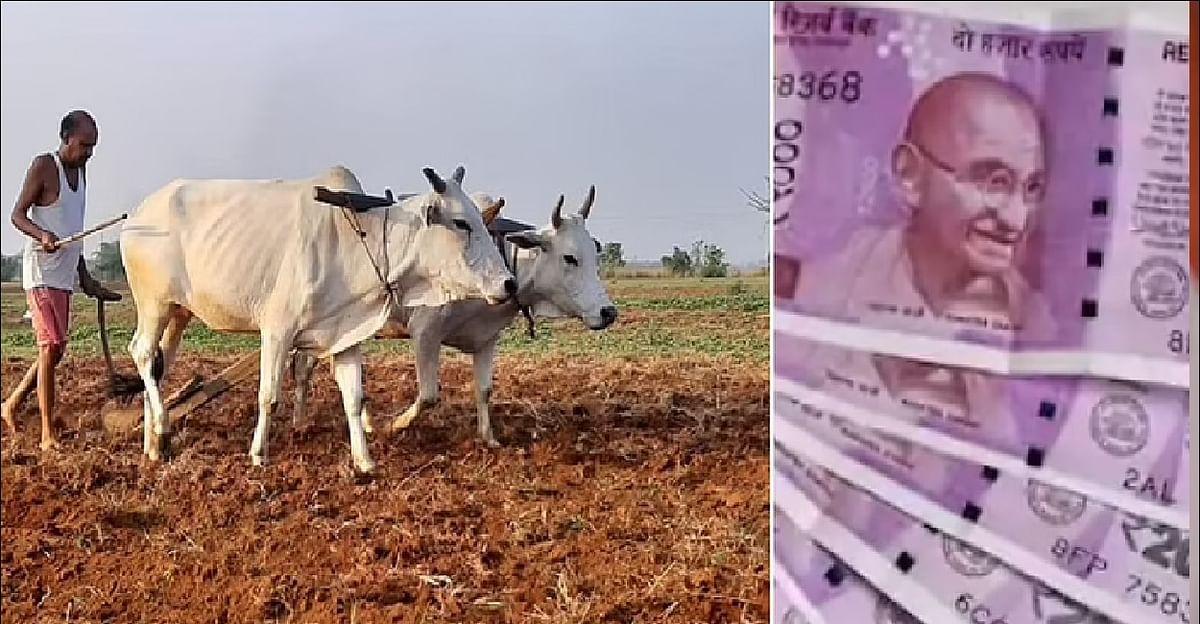 PM Kisan Yojana: किसानों के लिए खुशखबरी, जल्द मिलेगी अटकी हुई किश्त